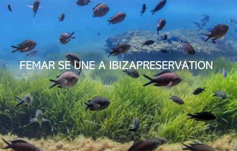 femar, empresa de mantenimiento técnico integral en Ibiza